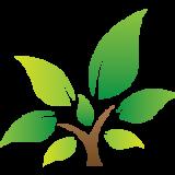 الغصن الأخضر La rama verde