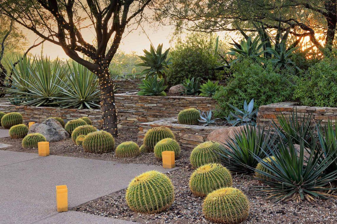 المناظر الطبيعية الصحراوية المستدامة