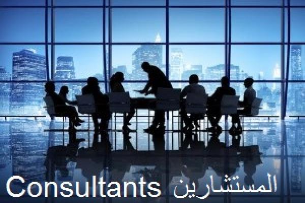 Consultants